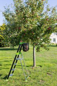 kvalitní žebřík do zahrady