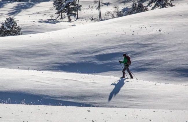 jak vybrat běžecké lyže