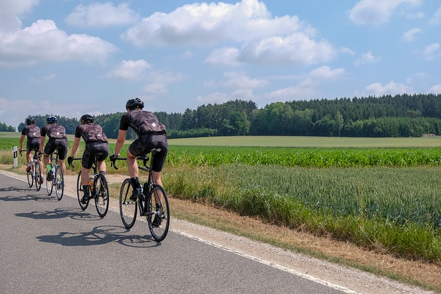 jaké koupit silniční kolo