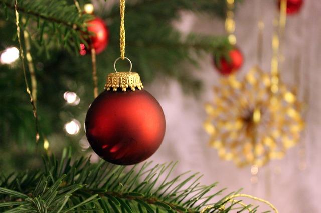 jak osadit vánoční stromek