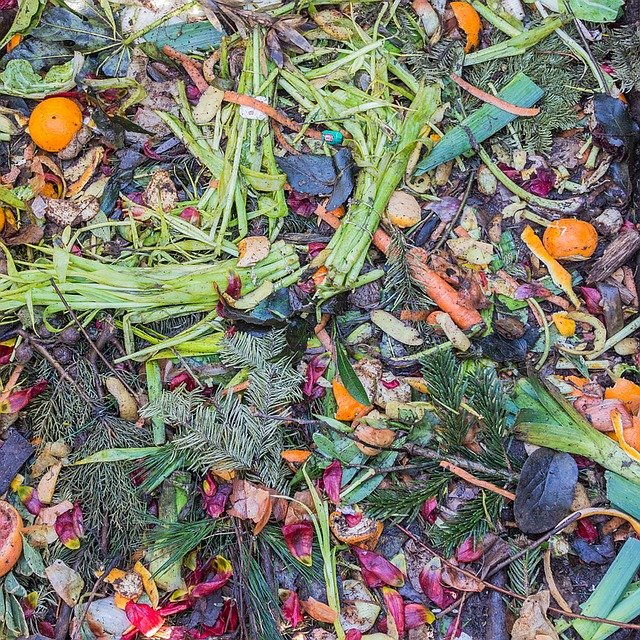 organický odpad - kompost