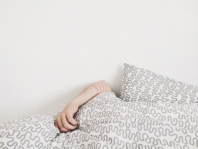 postel pro hosty